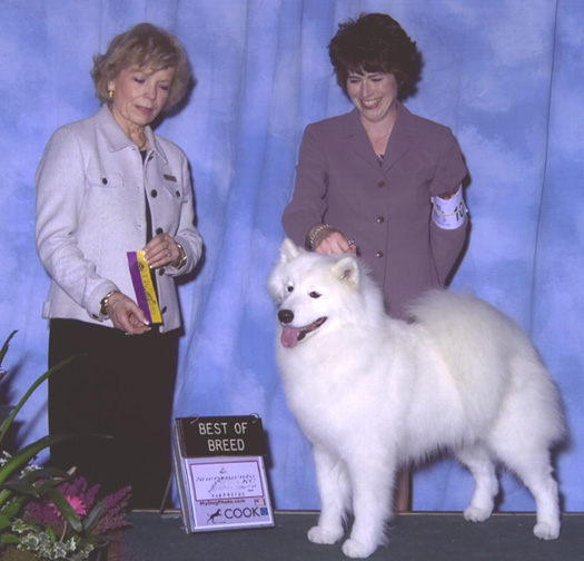 Lhotse takes Breed - Judge Judith Goodin