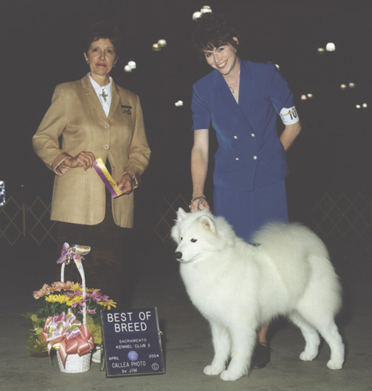 Lhotse takes breed Judge JA Harrington