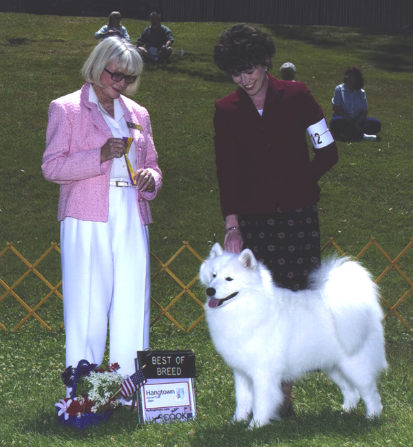 Lhotse takes Breed under Judge Mrs. Patricia Gellerman