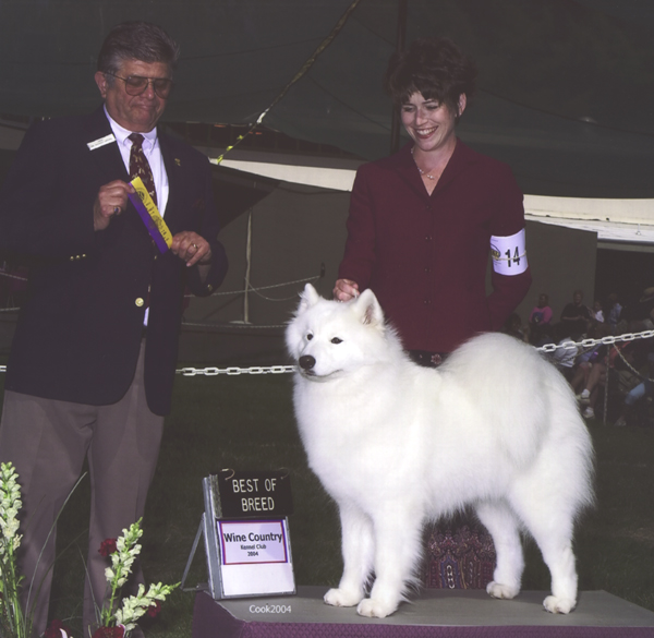 Lhotse takes Breed under Judge Mr. Vincent Grosso